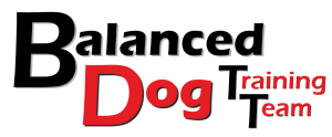 Balanced Dog Training Team
