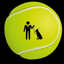 εκπαίδευση σκύλου στη θεσσαλονίκη