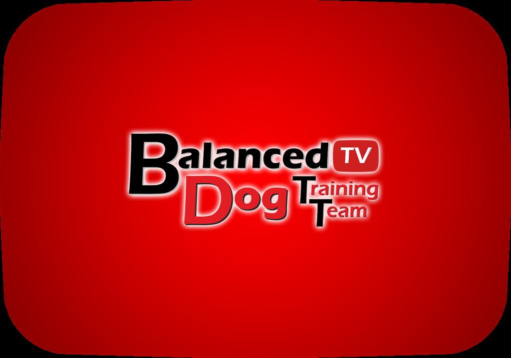 Balanced Dog Training Team - YouTube λογότυπο