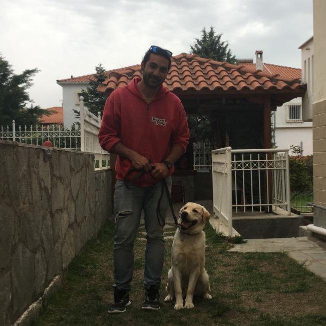 εκπαιδευση σκυλων