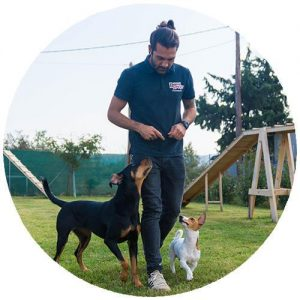 Άκης Τσιαντής - Εκπαιδευτής Σκύλων στην Balanced Dog Training Team Θεσσαλονίκη