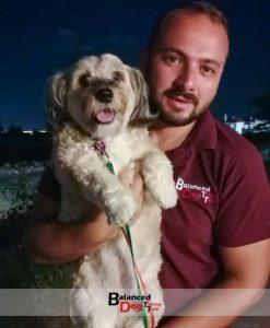 Εκπαιδευτήριο για σκυλιά Θεσσαλονίκη