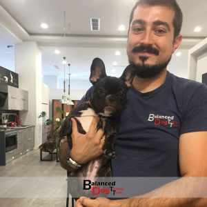 Η Βασική Εκπαίδευση Σκύλου στη Balanced Dog Training Team γίνετε στο χώρο του εκπαιδευτηρίου ή στο χώρο του πελάτη σε Λάρισα και Βόλο.