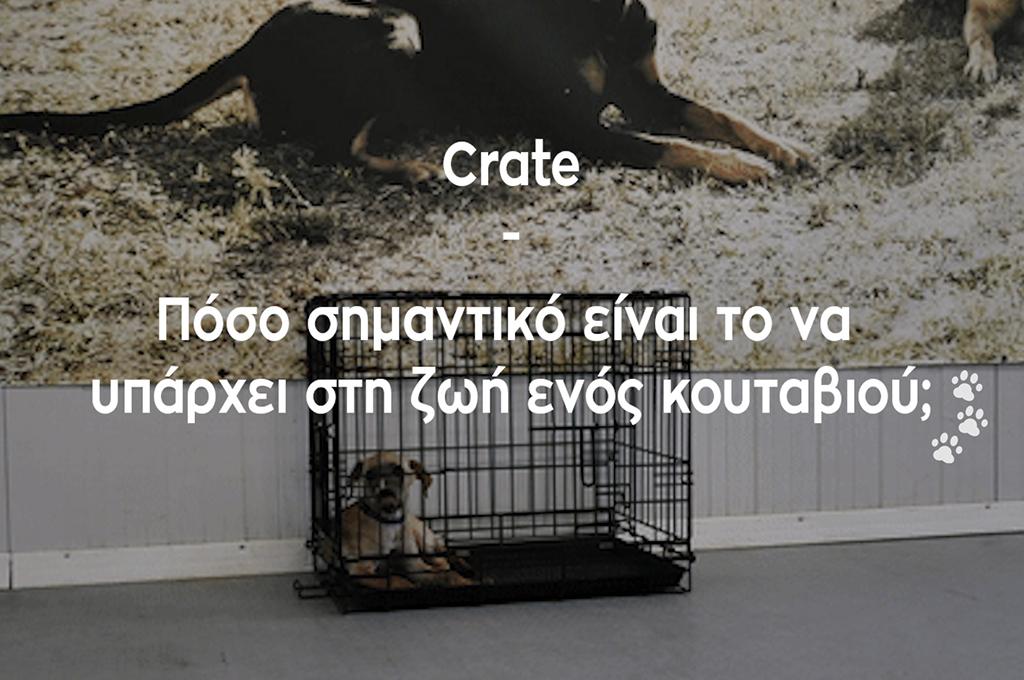 Crate – Πόσο σημαντικό είναι να υπάρχει στη ζωή ενός κουταβιού;