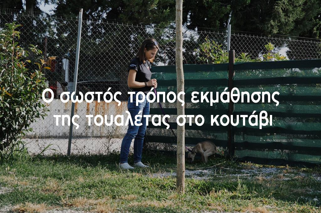 o_swstos_tropos_ekmathishs_ths_toualetas