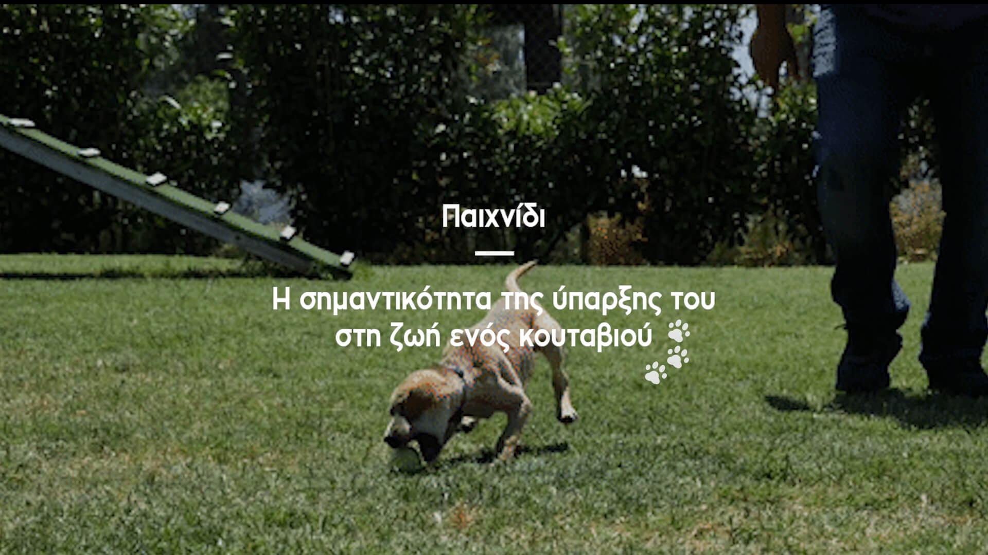 paixnidi