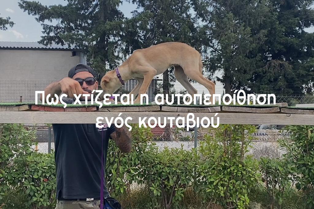 xtizetai_h_autopepoithisi_enos_koutaviou