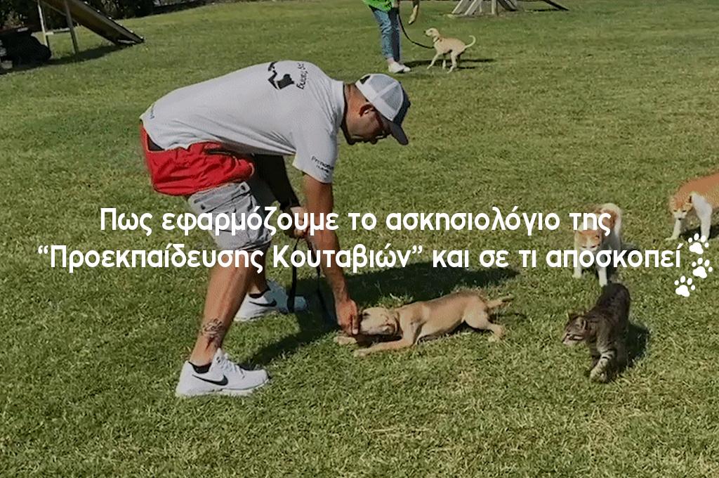 Ο εκπαιδευτής σκύλων Άκης Τσιαντής εφαρμόζει μια άσκηση του ασκησιολογίου της προεκπαίδευσης κουταβιών στο κουτάβι Titi